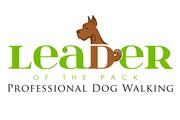 Professional Dog Walking Services,  Dog Walkers Oakville - Leader of th
